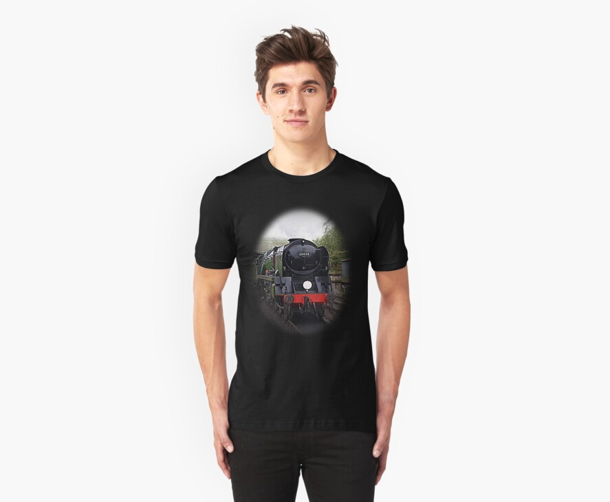 Steam Train-Tee/Hoodie by naturelover