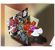 Orchid 4U Poster