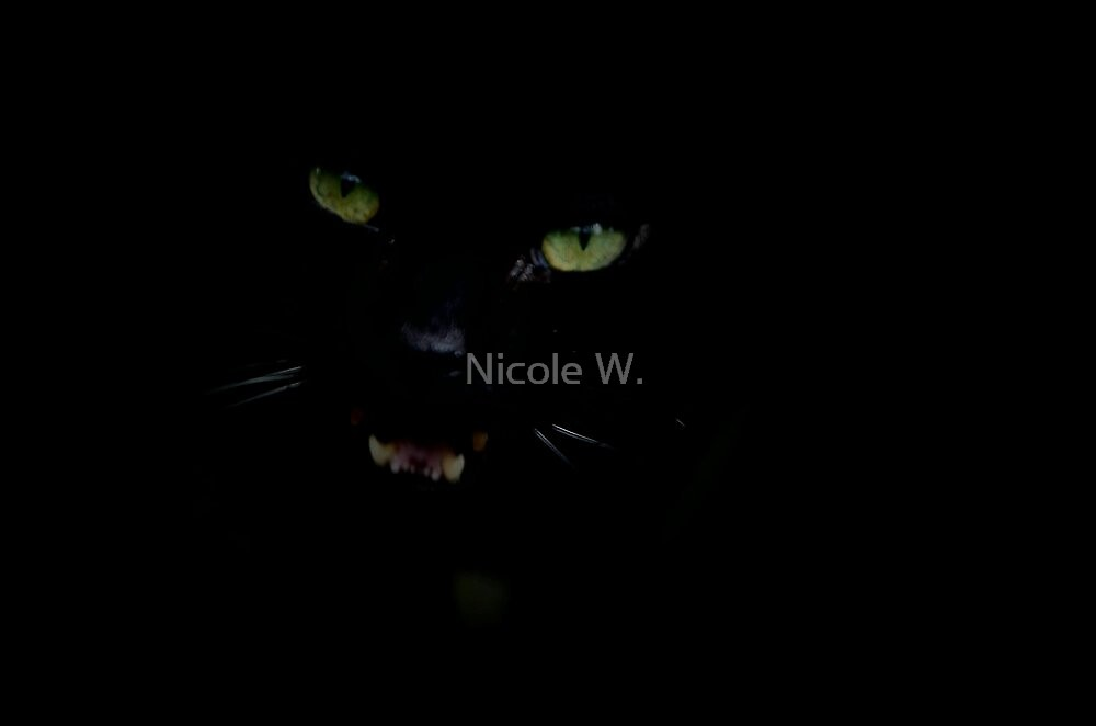 Is it a panther?  by Nicole W.