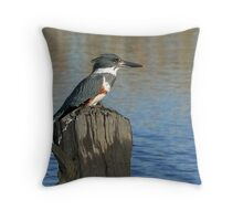 Female Belted Kingfisher On A Stump Throw Pillow