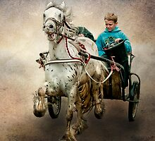 Gypsy Trot by Tarrby