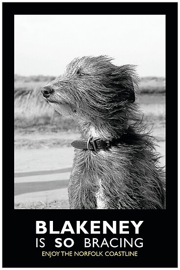 Blakeney is SO bracing by marc melander