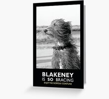 Blakeney is SO bracing Greeting Card
