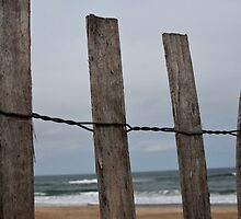 Ocean Through the Fence by EskimoKiss