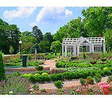 English Garden Photographic Print