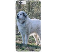 Goliath INTENT iPhone Case/Skin