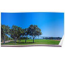 Coronado Bridge and Trees Poster