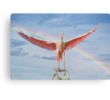 Bow in the Clouds and a Bird on the Branch Canvas Print