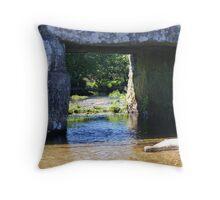 Window under the bridge Throw Pillow