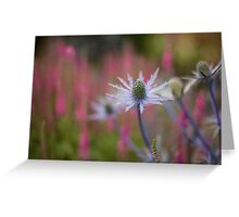 Thistle Grove Greeting Card