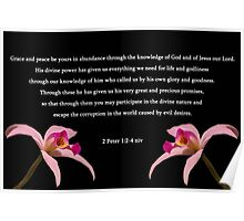2 Peter 1:2-4 Poster