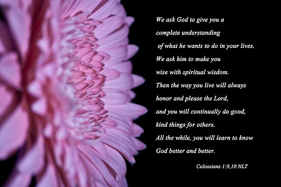Colossians 1:9,10 by Deborah McLain