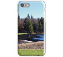 Parker Dam State Park iPhone Case/Skin