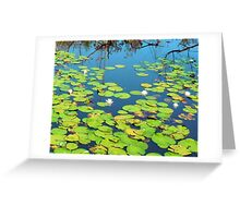 Once Upon a Water Lily Greeting Card