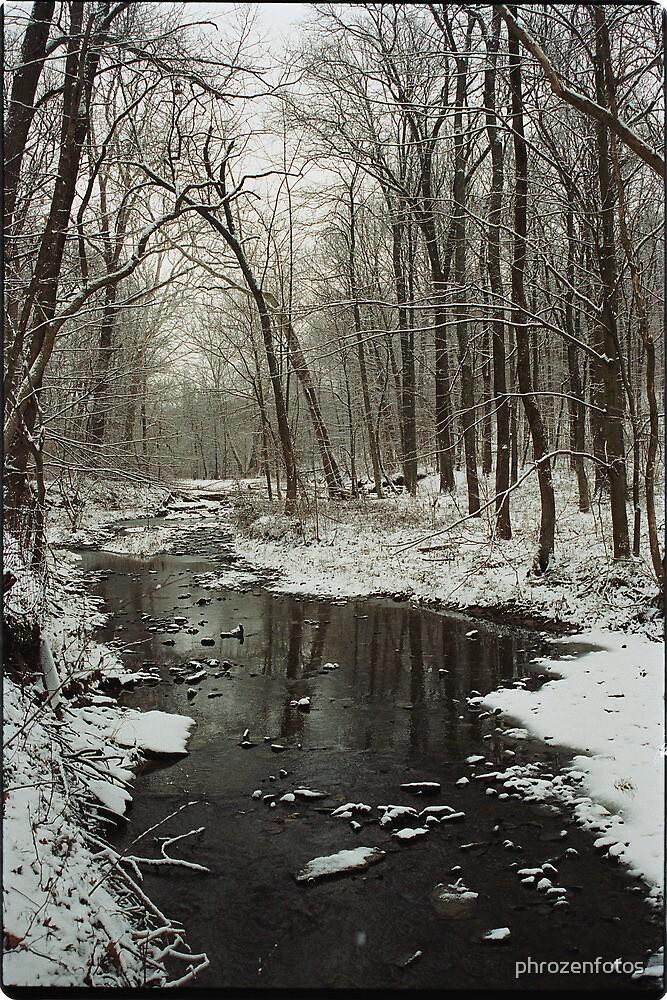 Winter Scene on Bullittsville Rd.   by phrozenfotos