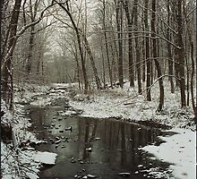 Winter Scene on Bullittsville Rd.   by phrozenfotos