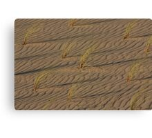 Dune 7828 Canvas Print