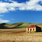Homestead, Burra SA by Tim Coleman