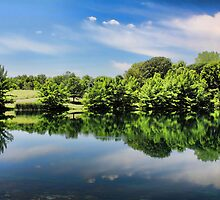 Mirrored Image by Jim  Egner