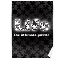 Life- the ultimate puzzle Poster