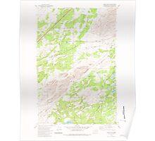 USGS Topo Map Washington State WA Lance Hills 241942 1980 24000 Poster