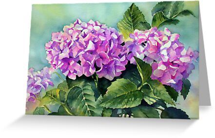 Pink Hydrangeas by Ann Mortimer