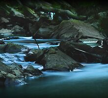 Mullum Mullum Creek by Kristian Faul