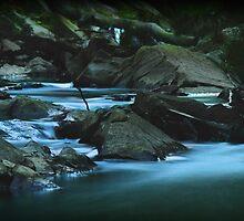 Mullum Mullum Creek by Kristian Faul
