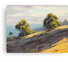 Kanimbla Valley Hills, nsw Canvas Print