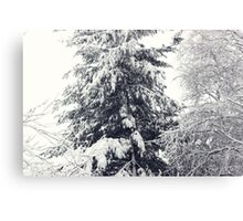 January Snowstorm Canvas Print