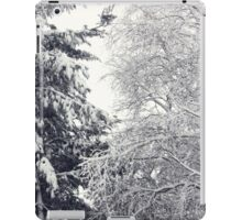 January Snowstorm iPad Case/Skin
