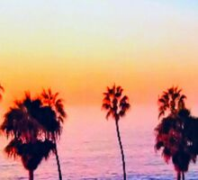 Multiple Palm Trees Sunset Sticker