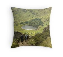 A Walk In The Park....The Descent Begins Throw Pillow