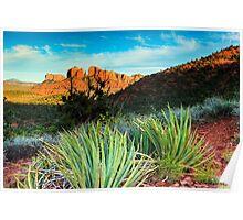 Arizona Sunset Poster