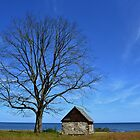 House by the sea by InaLina