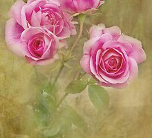 Victoriana Roses by Catherine Hamilton-Veal  ©