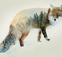 winter fox by Vin  Zzep