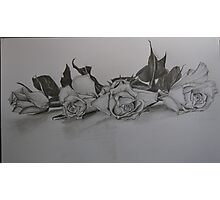 Four Roses Photographic Print