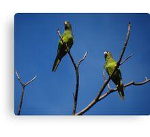 Bird's Tree - Arbol De Pájaros Canvas Print