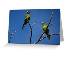 Bird's Tree - Arbol De Pájaros Greeting Card