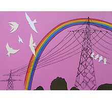 rainbow birds Photographic Print
