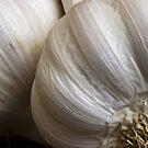 Garlic by Ellesscee