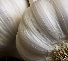Garlic by Ellesscee
