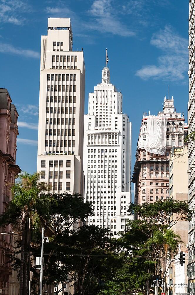 Banespa and Martinelli Building in downtown sao paulo. by aurelioscetta