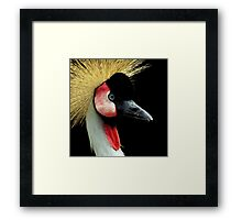 Avian Profile ~ Part Twelve Framed Print