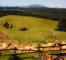 Country At It's Best by mamasita