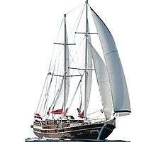Turkish Gulet Under Sail Isolated On White Photographic Print
