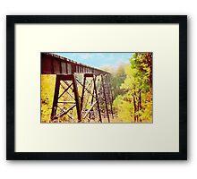 Train Trestle Framed Print