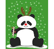 Merry Christmas, Panda! Photographic Print