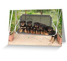 Six Rottweiler Puppies Lined Up On A Swing Greeting Card